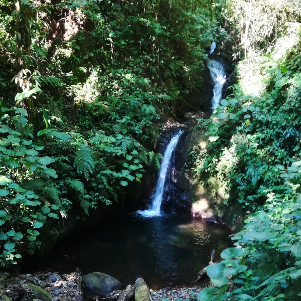 cascataa